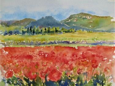 Le printemps dans l' Hérault