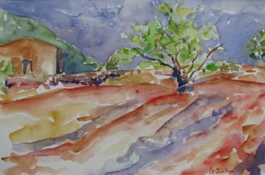Mûrier au Salagou